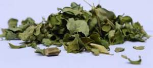 organic-moringa-tea-leaves-bulk