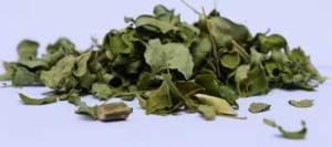 organic-moringa-tea-leaves-bulk