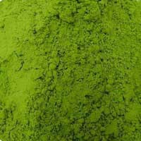 Pandan leaves powder