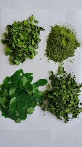 From-Fesh-Till-Dried-and-Powder-Organic-Moringa