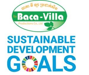 BCVL-SDG-2019