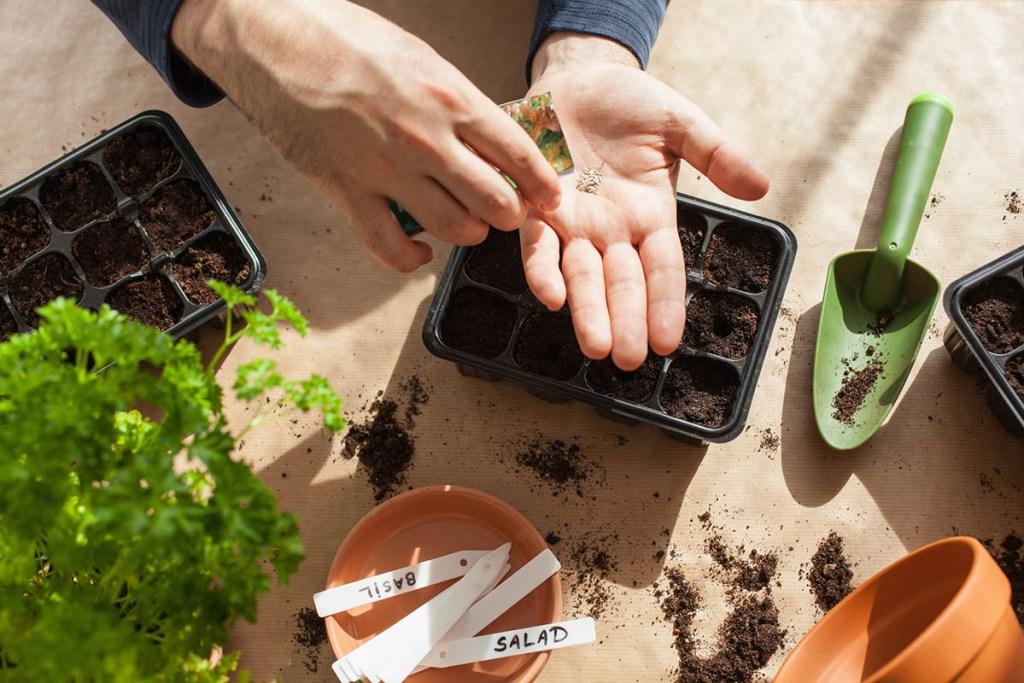 Herb gardening tools for an indoor vegetable garden