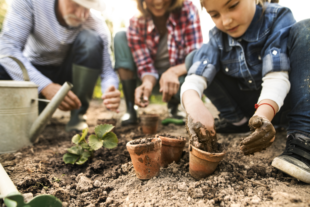 vegetable planting guide: Family gardening in the backyard