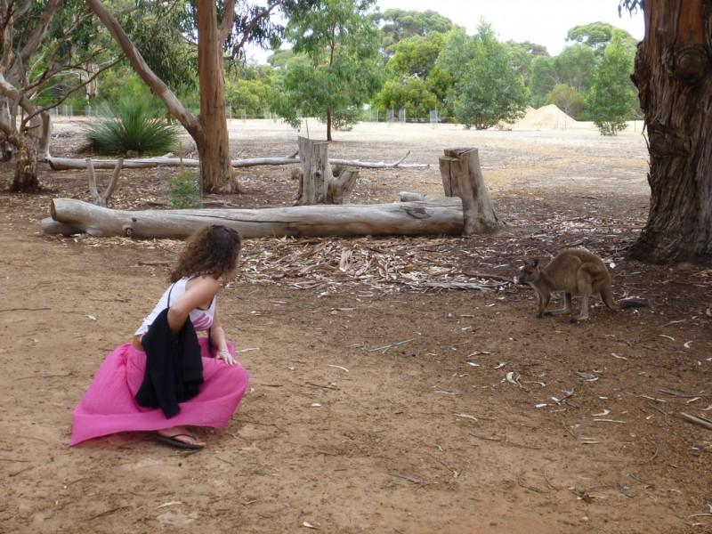 A woman and a Kangaroo