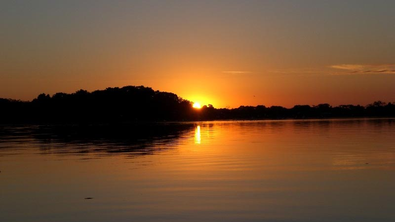 Bask in the beauty of the the Manaus Amazon Jungle- Brazil