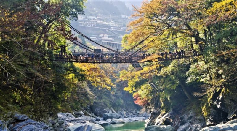 Stunning Vine bridges in Japan's countryside - Japanese Mythology