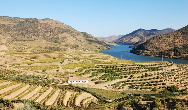 The stunning landscapes of the Douro River- Main Rivers in Europe
