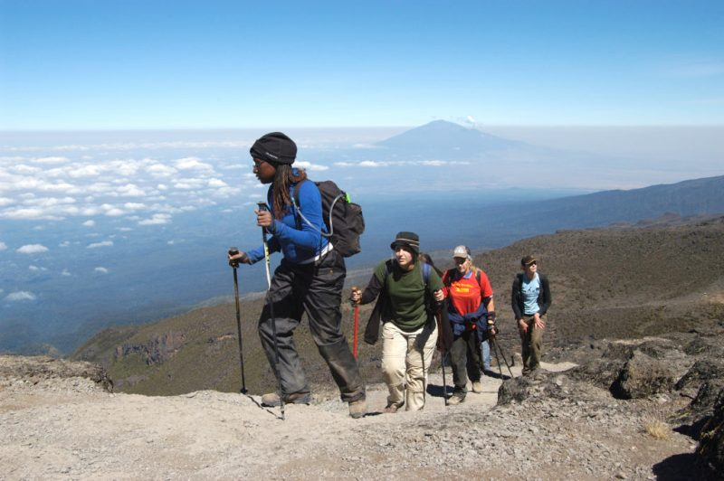 A guide in a blue jacket leads a group of trekkers up Mount Kilimanjaro