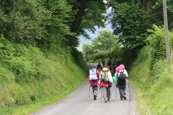 A group of people walk along the Camino de Santiago