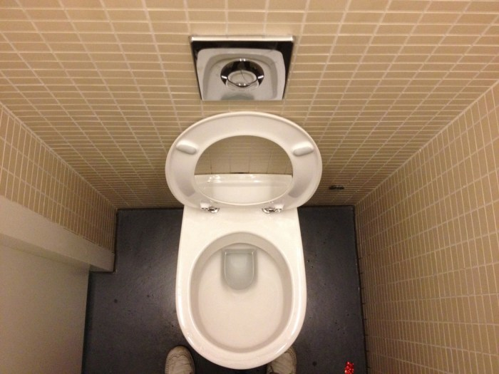 A toilet with the seat up seen from above