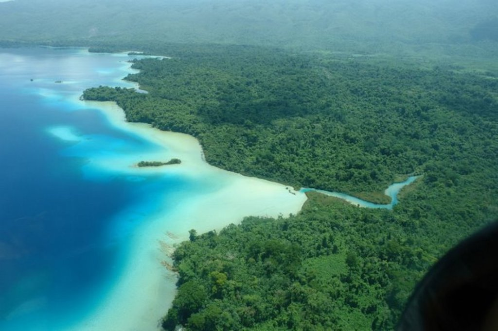 Arial view of jungle and sea in Chiapas, Mexico