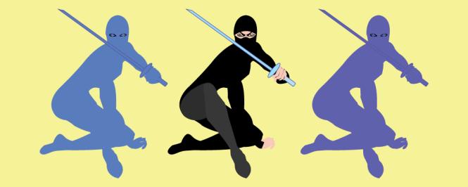 Financial Ninja