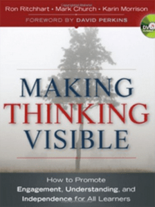 Making Thinking Visible (BayTreeBlog.com)