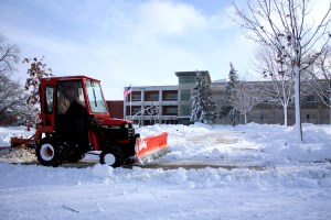 Snow Day (Bay Tree Blog.com)