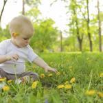 Un día de campo con el bebé: inolvidable para niños y mayores