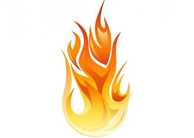 fuoco del bbq fiamma
