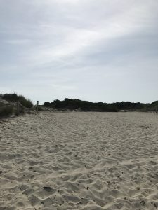 Wo einst die Strandbar stand...