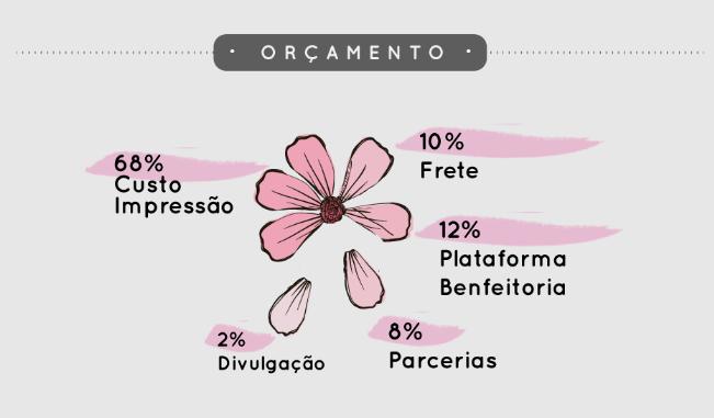 Gráfico de orçamento das metas da campanha Agenda Natureza Feminina no formato de uma flor. Cada pétala é uma categoria de custo diferente