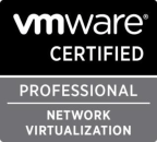 Network Virtualization logo