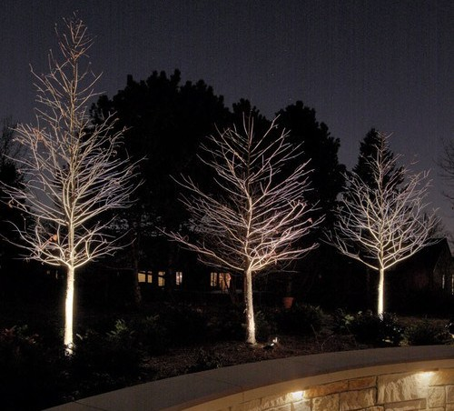 From the theater to your garden: landscape lighting ideas