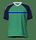 Fußball-EM 2016, Trikot Nordirland