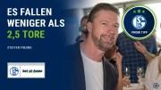 S04 Promi-Tipp Steffen Freund