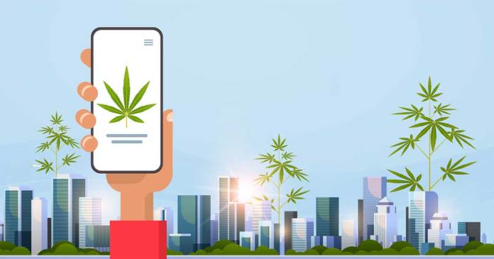 Cannabis and Telecom Industry are Similar