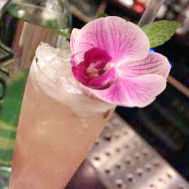 drink_Airto