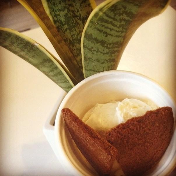2nd stop of #tastingplatesyvr is @Earnesticecream #vanilla #iceicebaby - from Instagram