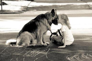adorable-animal-animals-child-Favim.com-695348