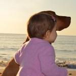Un cane in casa protegge il bambino da asma, allergie e infezioni virali e batteriche