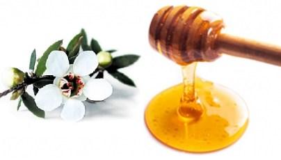 miele di manuka proprietà