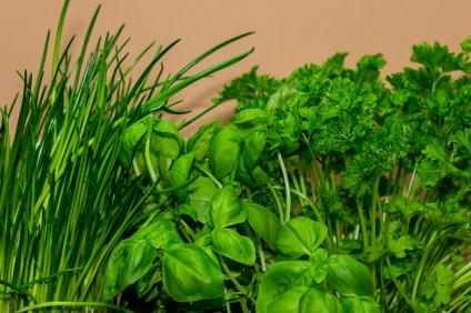 erbe aromatiche basilico