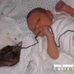 Lotus Birth®, bambini nati… con la placenta. Cos'è la nascita Lotus, quali sono i benefici, come si pratica