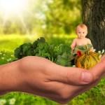 Come ti insegno a non sprecare il cibo, appunti di educazione ambientale