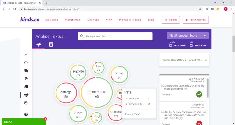Print da tela de análise do site da binds.co