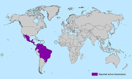 zik-world-map_active_02-01-2016_web.jpg