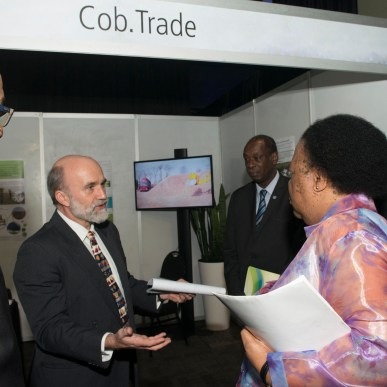 r-l: Dr. Mohamed Eisa (Director of UNIDO Regional Office, South Africa), HE Naledi Pandor (Minister of Science & Technology, South Africa), Philipp. Steiner (Cob.Trade Team: Biomass.Market Project) and Gerswynn Mckuur (National Project Manager at Technology Innovation Agency)