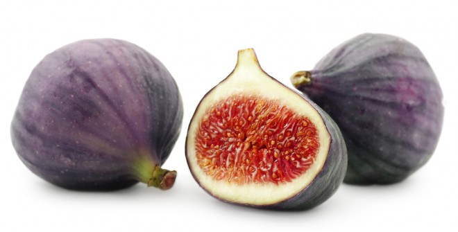 Figs for horses and humans