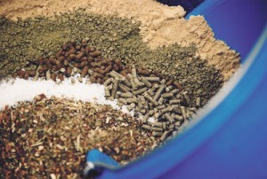 Many ingredients for many needs...but are we over-supplementing horses?