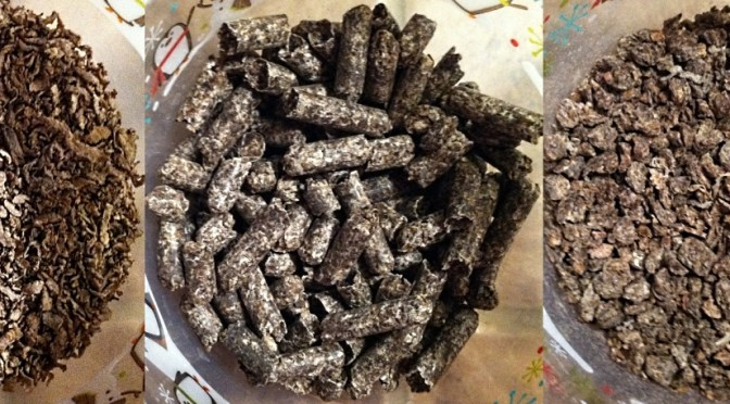 Beet pulp for horses