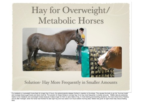 The Whole Food Diet for Horses