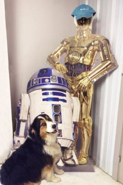 BioStar Kemosabe with Star Wars friends
