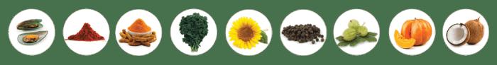 Receptor EQ ingredients | BioStar US