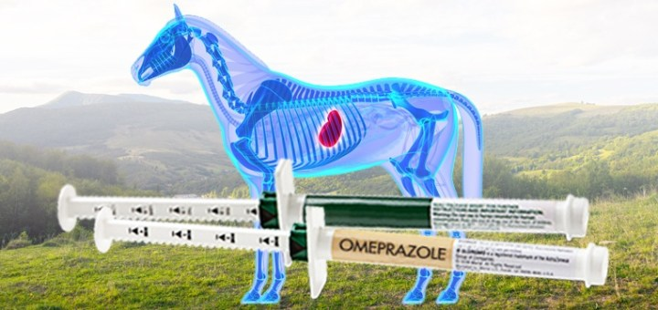 Omeprazole use in horses with ulcers | BioStar US