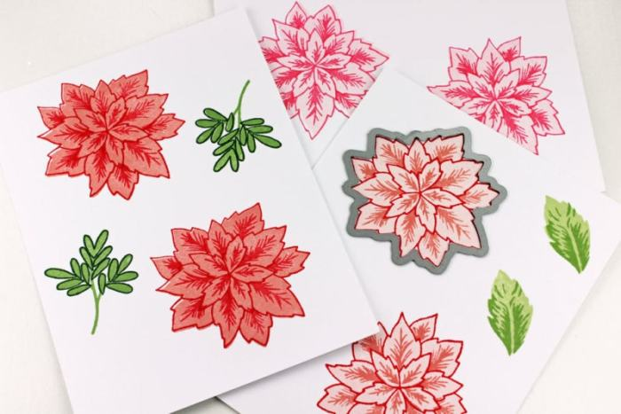 holiday-poinsettias-how-to