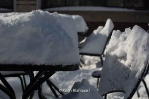 Snow in central park (2013 - image Koen Blanquart)