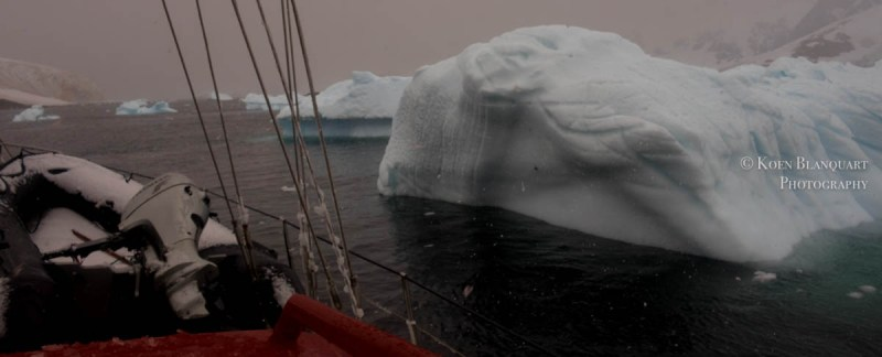 Sailing in the morning in the Gerlache strait, next to some smaller icebergs