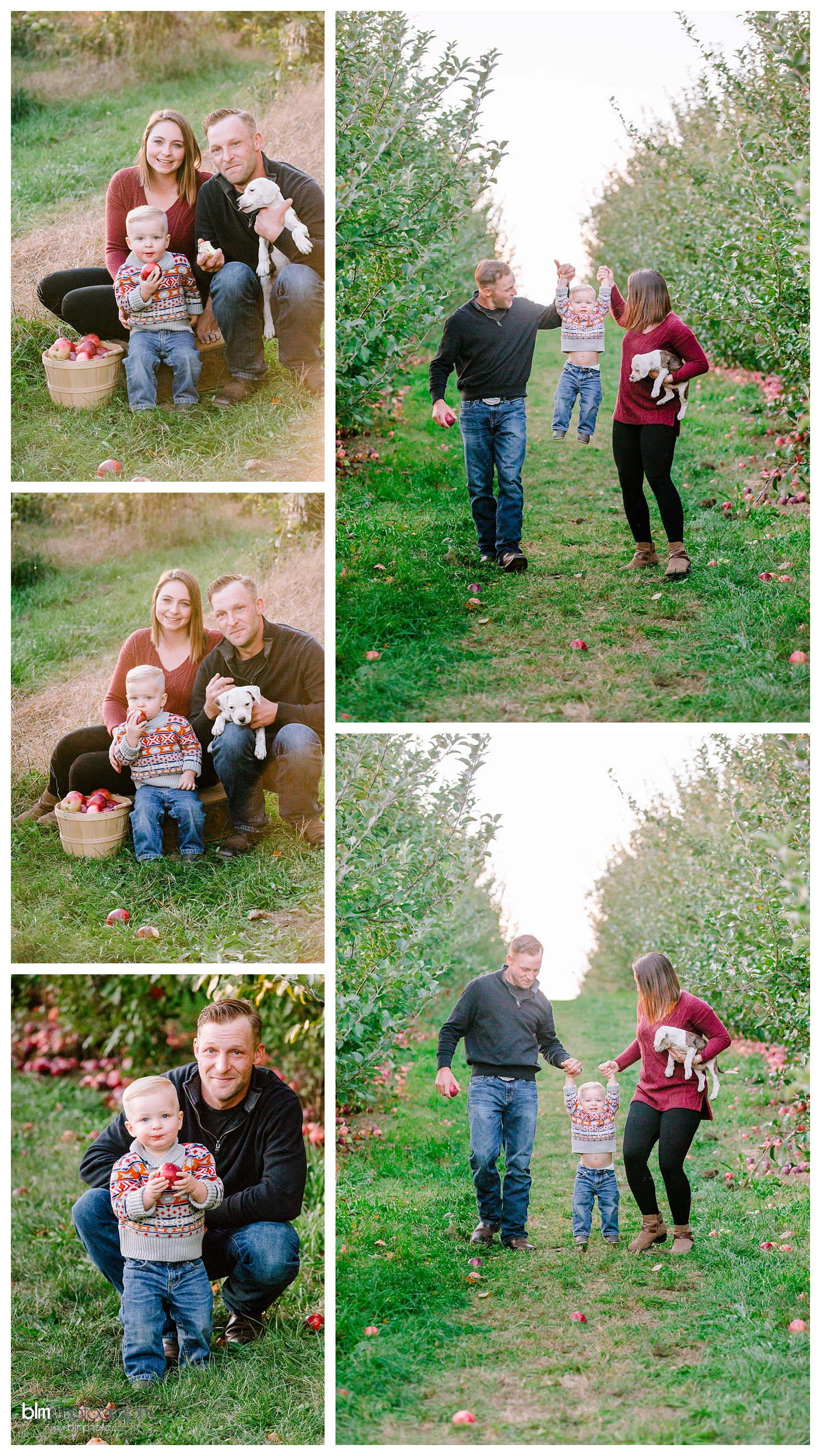Apple Orchard,Axle,BLM,Brianna Morrissey,Brie Morrissey,Buddy,Candid,Family Photography,Family Portraits,Family with Puppy,Hunter,Kathleen,Lifestyle,Lifestyle Family Photography,Mack's Apples,Manchester Family Photographer,Natural Light,Newton Family,Newton-Family,Oct,October,Orchard Family Session,Outdoor Photography,Photo,Photographer,Photography,Southern NH,www.blmphoto.com/contact,©BLM Photography 2017,