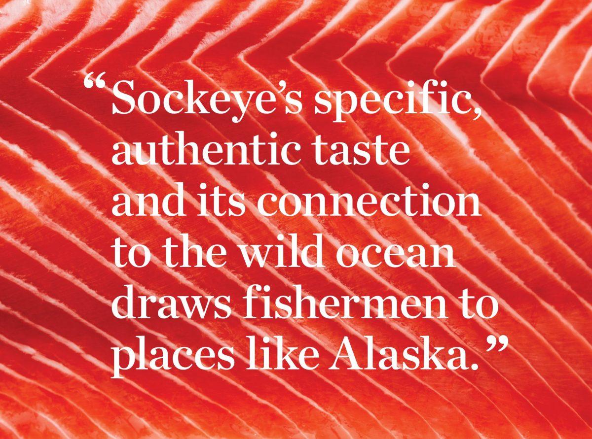 Salmon_Blog6